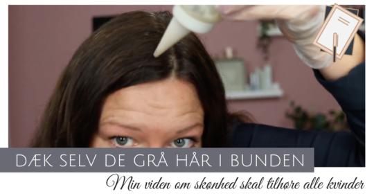 dæk grå hår derhjemme